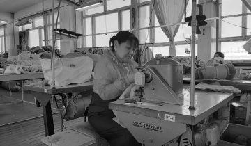 Projet OTASIE – savoir-faire mongols
